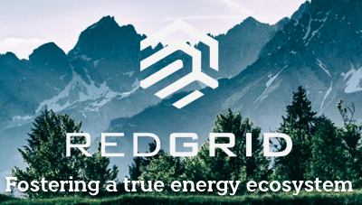 Redgrid logo